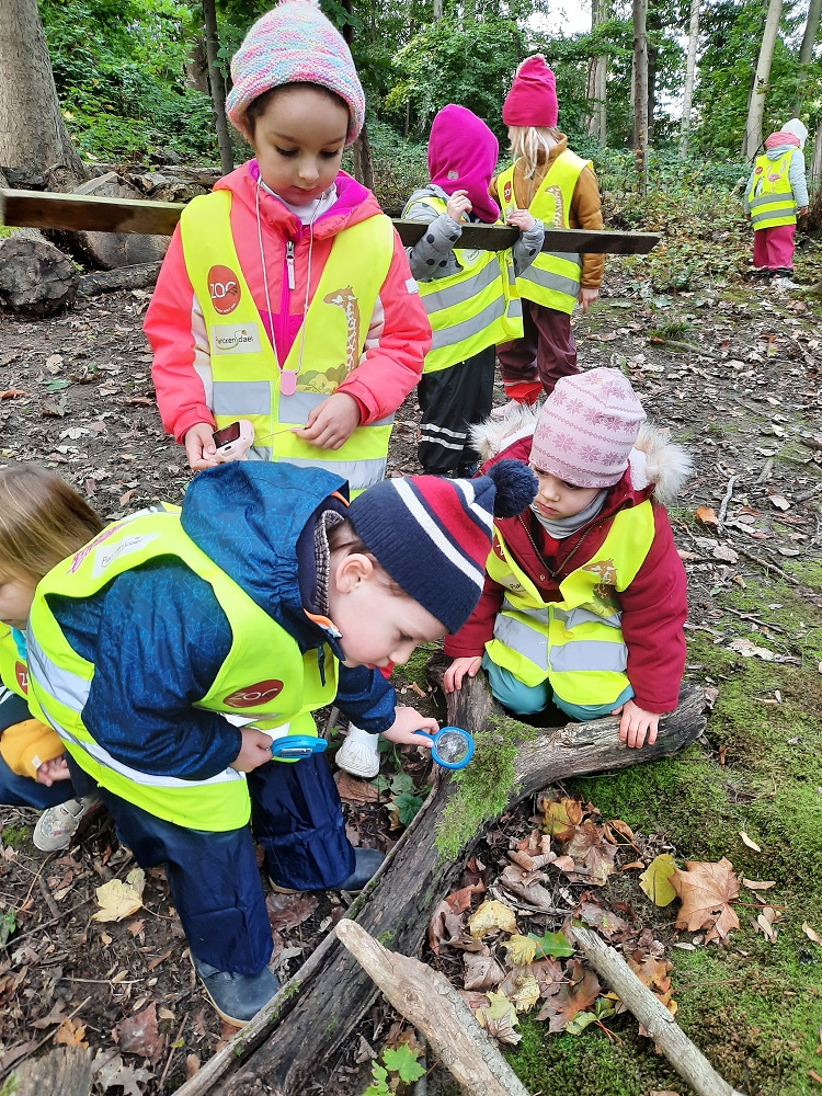 A child using a magnifying class to look at moss on tree bark, watched by two other children, while on a forest walk.