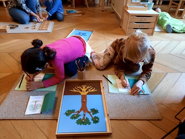 Two girls drawing the different parts of a tree.