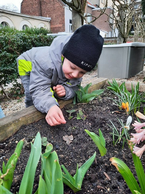 A boy planting seeds in the garden.